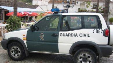 Photo of La Guardia Civil localiza una nueva planta exótica en el río Guadalquivir