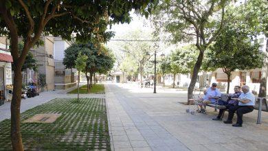 Photo of Mairena del Aljarafe estudia la segunda fase de la renovación de los jardines Ciudad Aljarafe