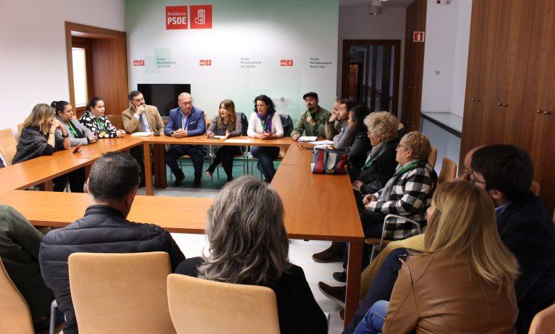 Photo of La Plataforma en Defensa de la vivienda de San Juan trasladó sus demandas a PSOE y Adelante en el Parlamento