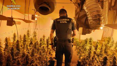 Photo of La Guardia Civil desmantela una organización dedicada a vender droga en La Vega del Guadalquivir