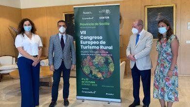 Photo of La Junta señala el turismo rural como «motor de desarrollo de Sevilla» tras la crisis del COVID-19