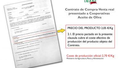 Photo of COAG denuncia «coacciones» a cooperativas para que vendan su aceite por debajo de coste