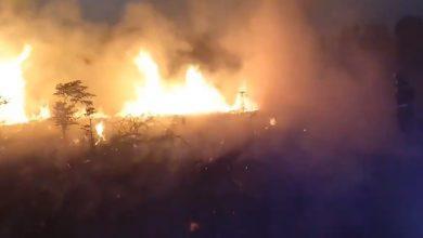 Photo of Los bomberos alertan de varios incendios de vegetación «con varios focos y simultáneos»