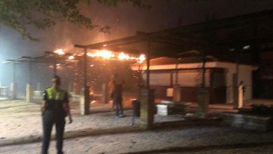 Photo of Un incendio en la cuneta de la A-49 se propaga hasta el parque Joaquín Ruiz Jiménez de Tomares