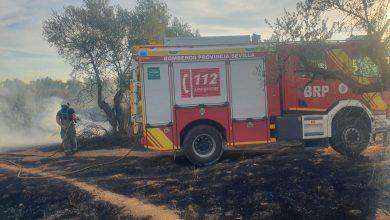 Photo of Un incendio de pastos afecta a la circulación entre Mairena y Bormujos