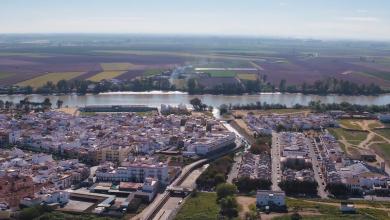 Photo of Coria bonificará en 2021 las explotaciones agrícolas y ganaderas que trabajen en producción ecológica