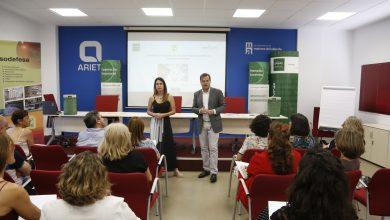 Photo of Nuevas ayudas municipales a las empresas de Mairena