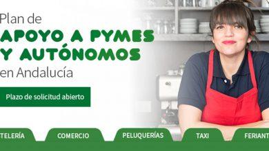 Photo of Empleo recibe en Sevilla más de 6.000 solicitudes de autónomos para las ayudas de 1.000 euros
