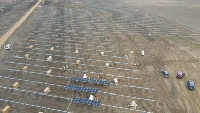 Photo of Endesa inicia la instalación de los 115.000 paneles solares de la planta fotovoltaica de Sanlúcar la Mayor