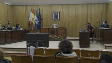 Photo of Mairena del Aljarafe ha aprobado el reconocimiento a colectivos del municipio como parte de la conmemoración de San Idelfonso