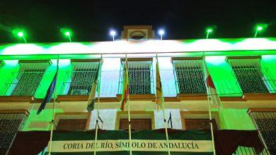 Photo of Coria aprueba instar al Gobierno a regular al sector de Energía y bajar el IVA