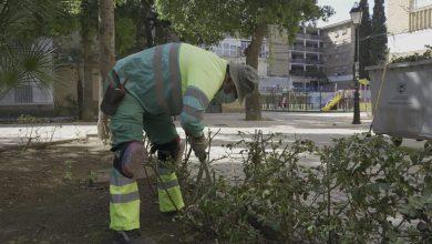 Photo of Nuevo paso para la ampliación del servicio de mantenimiento de calles de Mairena del Aljarafe