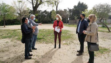 Photo of Carmen Herrera anuncia que la Avenida Plácido Fernández Viagas de Castilleja de la Cuesta contará con un gran parque canino