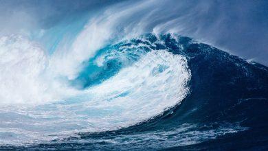 Photo of 8 de Marzo: somos marea, somos la mar