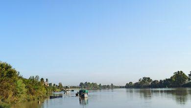 Photo of Coria del Río pide participar en el nuevo decreto de pesca de interior de la junta y la inclusión de la actividad de sus pescadores
