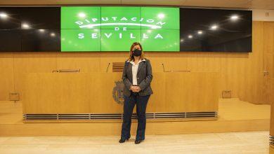 """Photo of Ciudadanos aplaude que la Diputación de Sevilla haya dado """"luz verde"""" a su moción para crear un """"plan de pueblos limpios de contaminación publicitaria"""""""