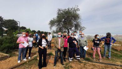 Photo of Con la entrega de casi 50 Huertos Sociales, Bormujos da un paso más como modelo de ciudad sostenible