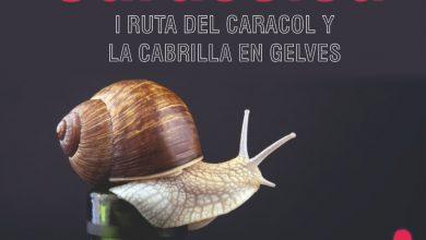 Photo of Gelves presenta en la Casa de la Provincia Caracolea, la I Ruta del Caracol y la Cabrilla en Gelves