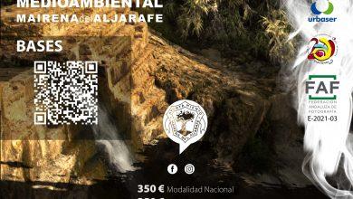Photo of Fotógrafos de toda España participan en el I Concurso Nacional del Plan del Árbol de Mairena del Aljarafe