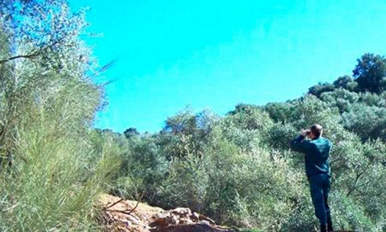 Photo of La Guardia Civil investiga a dos personas por un incendio forestal en un paraje de importante valor medioambiental