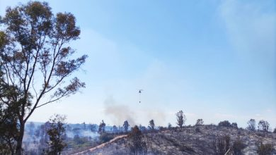 Photo of Un incendio forestal moviliza durante varias horas a cuatro bomberos del parque de Mairena