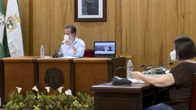 Photo of Batería de ayudas para que la recuperación sea también social en Mairena del Aljarafe