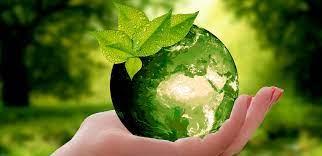 Photo of La belleza del Medio Ambiente