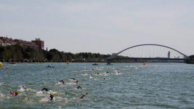 Photo of 14 nadadores del Club Natación Mairena en el andaluz de Aguas Abiertas
