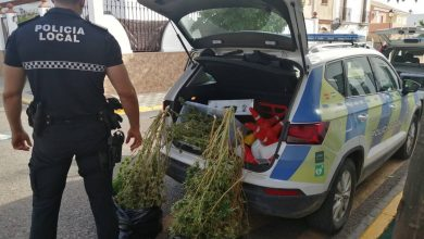 Photo of La Policía Local de Bollullos de la Mitación acaba con un punto de venta de drogas