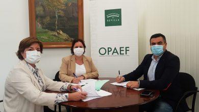 Photo of Nuevo convenio regulador tributario en Benacazón
