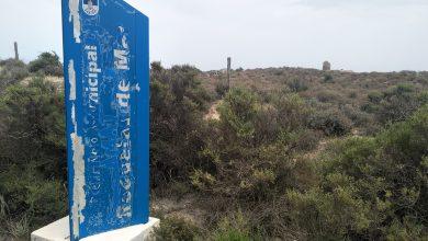 Photo of Aves y Fronteras en Puntas Entinas Sabinar